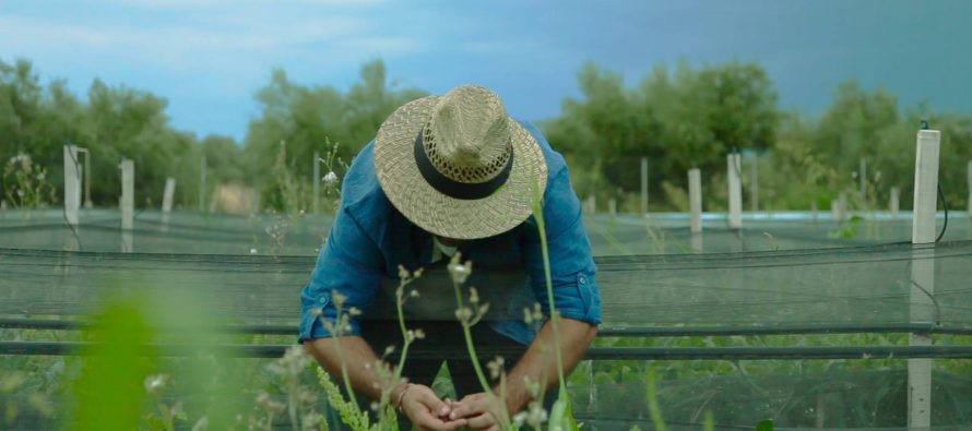 Una aplicación conecta agricultores locales de toda Europa para fomentar un cultivo sostenible