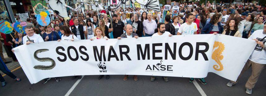Murcia aprueba un decreto ley para recuperar el Mar Menor pero admite que no es suficiente