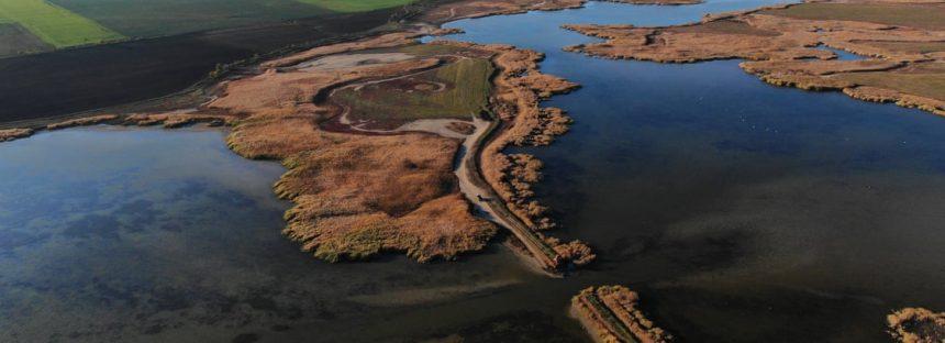 La Madre Naturaleza se recupera increíblemente rápido: reviviendo los ricos humedales de Ucrania
