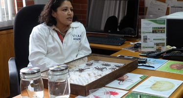 La colección nacional de ácaros más importante de México se encuentra en la UNAM