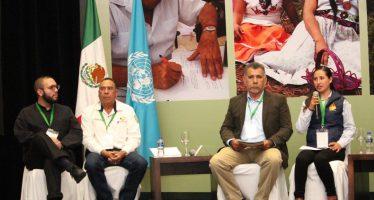 Se define proyecto que consolida el manejo forestal sustentable con criterios de paisaje en bosques y selvas mexicanos