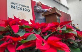 Lanzan proyecto nacional de plantas nativas para recuperar y promocionar el valor de 60 especies mexicanas