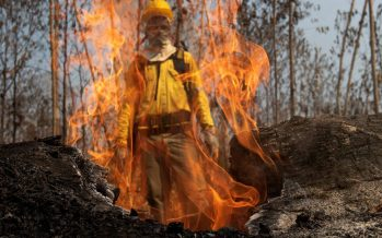 Los incendios aumentan un 30% en la Amazonia en el primer año de Bolsonaro