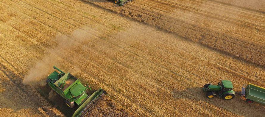Los actuales sistemas de producción sostenible son insuficientes para alimentar al mundo