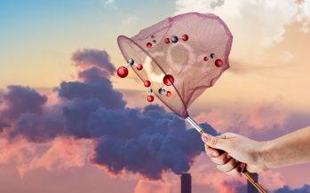Realizan aportación para capturar gases de efecto invernadero