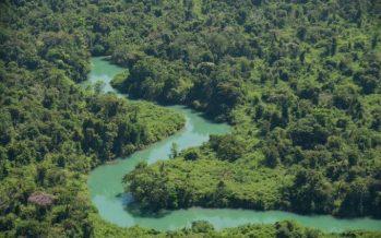 Los desafíos ambientales de México para el 2020