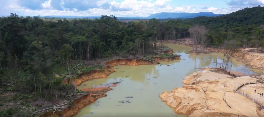 Como una bomba explotando: por qué la reserva más grande de Brasil se enfrenta a la destrucción