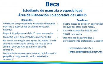 Beca para estudiantes de maestría o especialidad en el Área de Planeación Colaborativa de LANCIS