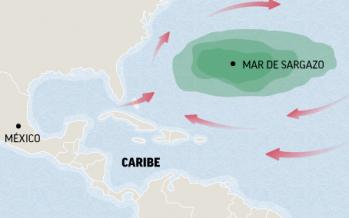 Seminario: Características de la circulación a lo largo del Caribe Mexicano