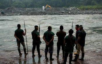 Latinoamérica: la defensa de los territorios indígenas en el 2019