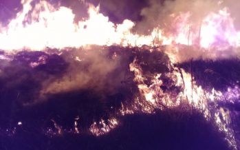 2019: el año del fuego en Latinoamérica