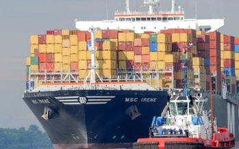 Exportaciones agroalimentarias superan los 34 mil 600 mdd a noviembre de 2019