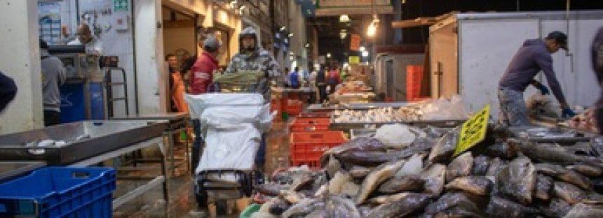 Retienen más de mil 300 toneladas de productos pesqueros y acuícolas durante 2019