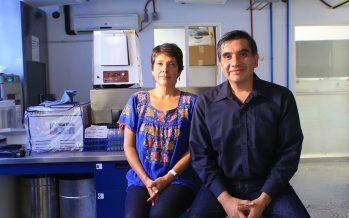 Investigadores de la UAM, van al rescate del estero Josefino, de San José Los Cabos, BCS
