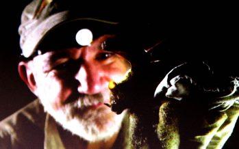 Rodrigo Medellín de la UNAM fue claro: los murciélagos no son culpables del coronavirus