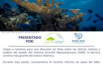 Comunicando la salud del Arrecife Mesoamericano