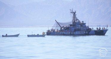 Disparan armas contra un barco de Sea Shepherd en el refugio de la vaquita marina en el Mar de Cortés