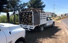 Cancelan actividades ilícitas de cambio de uso de suelo; Profepa asegura madera y carbón vegetal en Campeche