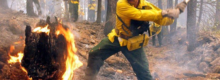 Para evitar incendios, Bienestar y Semarnat piden evitar la quema en terrenos de cultivo, en esta emergencia sanitaria