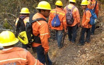 Sigue activo incendio de selva, cerca de la zona arqueológica Ichkabal, en Quinta Roo, México