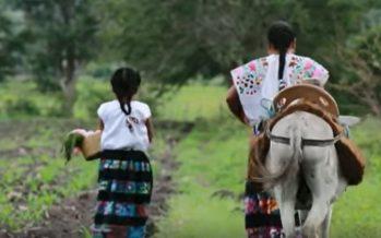 Tlali Nantli (Madre Tierra). Cortometraje en lengua náhuatl de Guerrero