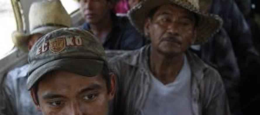 México y sus trabajadores agrícolas ante la pandemia de COVID 19