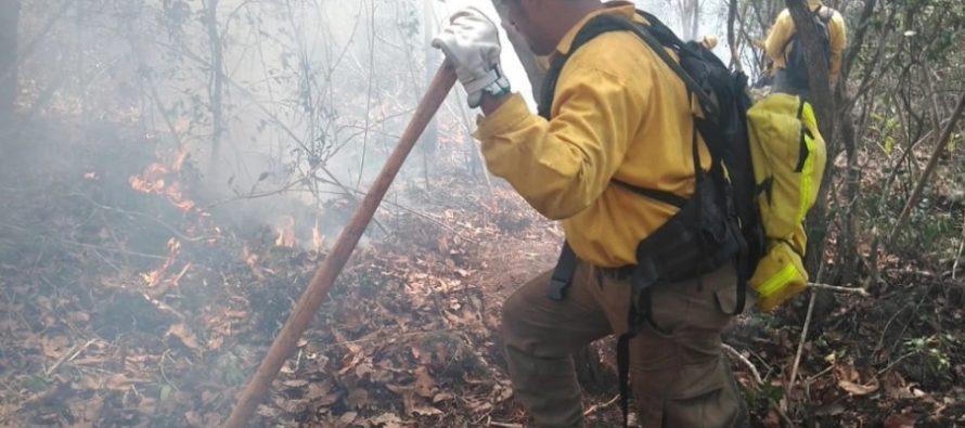 Afectadas 160 ha de selva y hojarasca por incendio en el Parque Nacional Cañón del Sumidero, en Chiapas, México