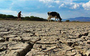 México registra sequía severa, extrema o excepcional en diferentes cuencas, y activa acuerdo de inicio de emergencia