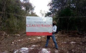 Fiscalía de la República va contra quienes afectaron vegetación forestal en el Ejido Valladolid Nuevo, en Quintana Roo