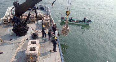 Reactivan construcción de arrecifes artificiales en el puerto Lázaro Cárdenas, para impulsar pesquerías