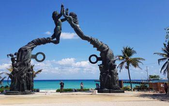 Gobierno municipal de Morena derriba árboles saludables, en el parque Los Fundadores de Playa del Carmen, QRoo