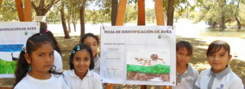 México representado en el Primer Coloquio Virtual: Retos y Estrategias para la Educación Ambiental en Mesoamérica