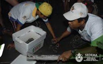Exigen organizaciones de la sociedad civil que no se extinga el Fondo Ambiental Veracruzano como decretó el gobierno