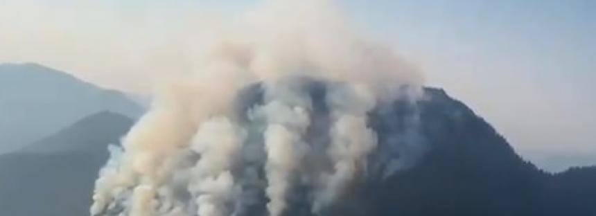 Se quema el bosque en el oriente de Michoacán; poderoso incendio en el cerro El Cacique