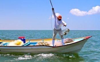 Cumple Conapesca 19 años; sostiene compromiso de administrar, ordenar y fomentar la pesca y acuacultura sustentable