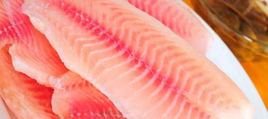 Estocada final a pescadores; se importarán 38 mil toneladas de filete congelado