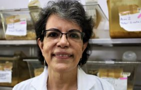 Una científica del IPN y su equipo, desarrollan experimentalmente nuevo tratamiento para la diabetes