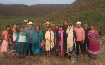 Del activismo ambiental en México, Tren Maya y AMLO *