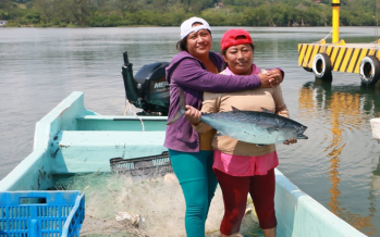 La Conapesca pidió a beneficiarios de Bienpesca denunciar cobros de servidores públicos, gestores o líderes pesqueros
