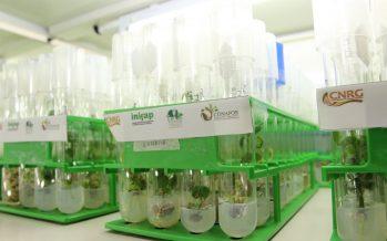 El Centro Nacional de Recursos Genéticos, resguarda la riqueza y biodiversidad genética de México