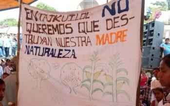 Pueblo masewal de Puebla, es respaldado en México y el extranjero para que la Ley Minera sea declarada inconstitucional