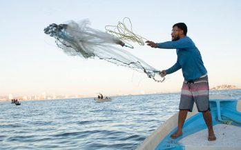 Benefician con Bienpesca más de 32 mil jóvenes pescadores y trabajadores acuícolas