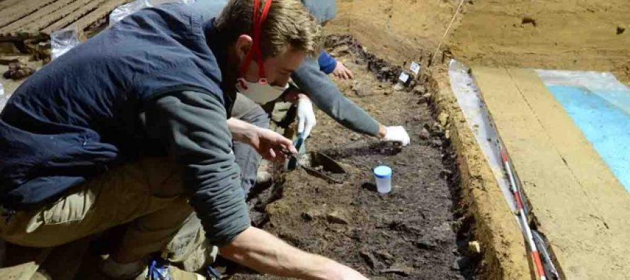 Hallan los vestigios más antiguos del Homo sapiens en Europa