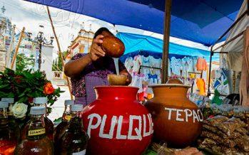 Agaves de México y pulque