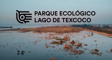 Con el Parque Ecológico Lago de Texcoco, se recuperarán 12 mil 200 h, como zona de restauración ecológica