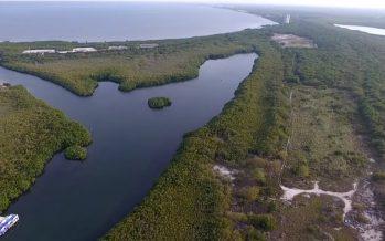 En la península de Yucatán, en México… ¡Por todos lados le estamos dando en la madre al agua!