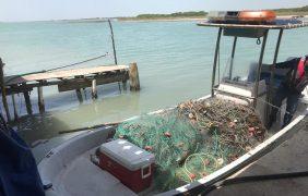 Conapesca retiene 213 toneladas de producto pesquero ilegal en operativo de inspección y vigilancia