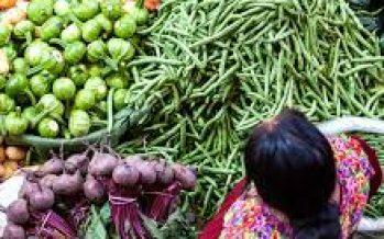 Convocatoria nacional para crear Redes Alimentarias Alternativas; sociedad civil y la CONABIO