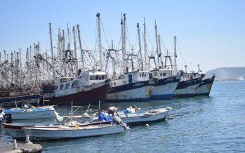 Paralizadas, las actividades pesqueras en el puerto de Mazatlán