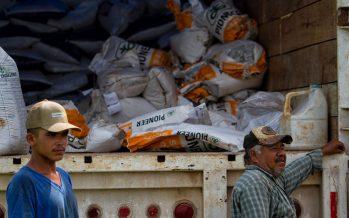 Entre los fertilizantes y la agroecología: contradicciones en la política para el campo *
